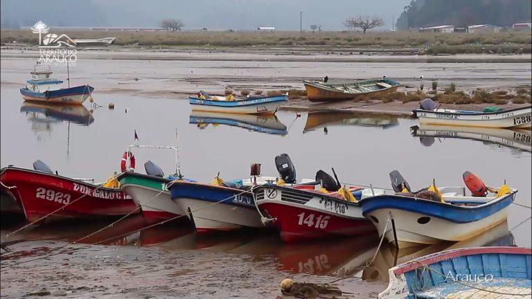 Arauco, Bío Bío, Chile