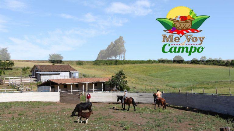 """Promoción: Campaña """"Me Voy al Campo"""" Territorio Amdel"""